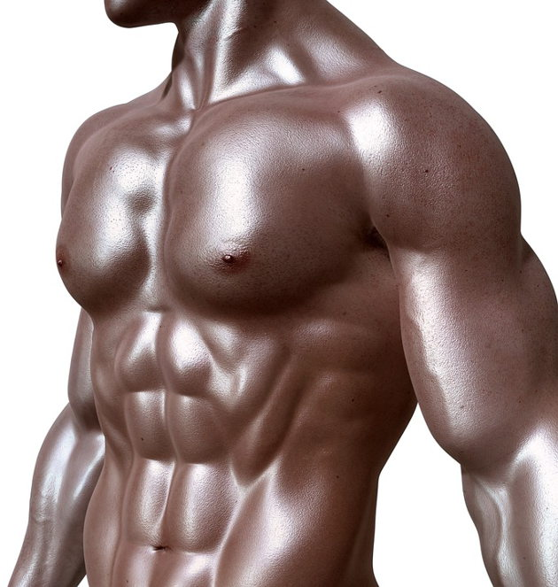 bodybuilder abs